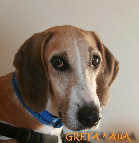 Greta1_AuA
