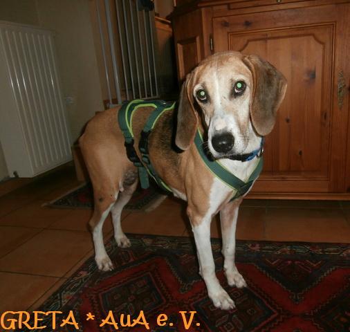Greta2_AuA